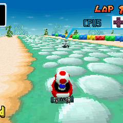 Toad racing through Sky Garden in <i><a href=