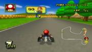 Mario (Mario Raceway -2-)
