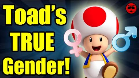 Is Toad Really Genderless? - Culture Shock