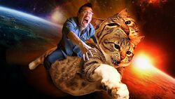Mr Kitty Saves the World Icon