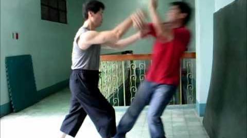 Xinyi Liuhebafa Xinyi Zhanzhuang - Fajing.wmv