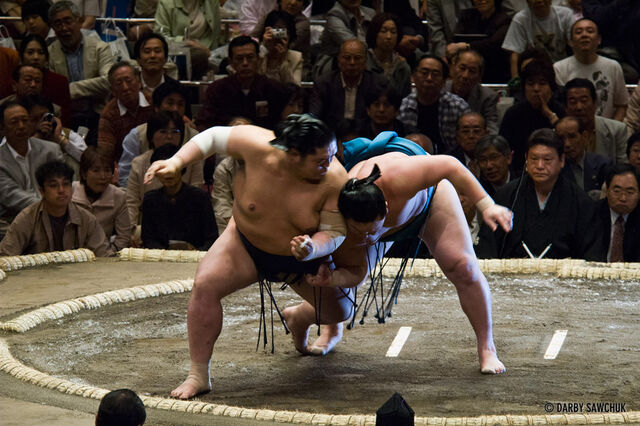 File:Sumo-wrestling-01.jpg