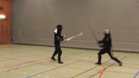 Martial Challenge Michael Thomas vs. Dierk Hagedorn (2nd angle)