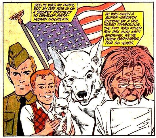 File:Rex the Wonder Dog 002.jpg