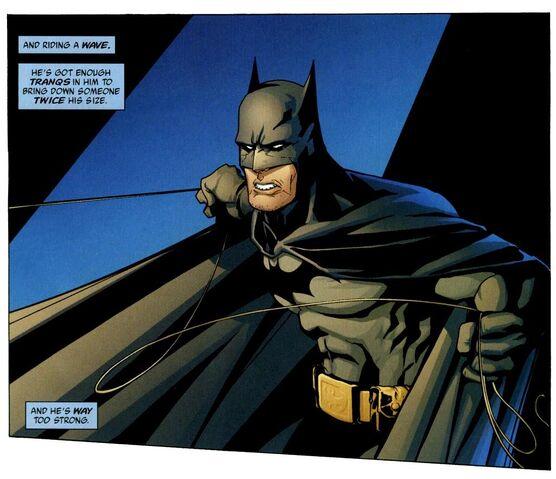 File:Batman 0343.jpg