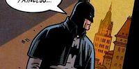 Bruce Wayne (Age of Wonder)