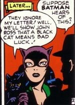 Catwoman's third costume