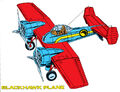 Blackhawk plane