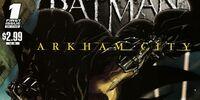 Batman: Arkham City/Covers