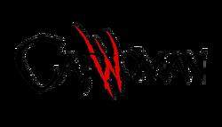 Catwoman Vol 4 Logo