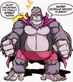 Grodd DC Super Friends 001
