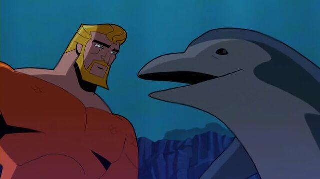 File:Fluke the Dolphin bb1.jpg