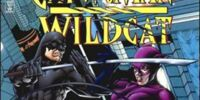 Catwoman/Wildcat/Covers