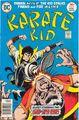 Karate Kid 6