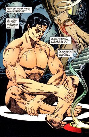 File:Bruce Wayne 039.jpg