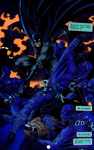 File:Batman 0348.jpg