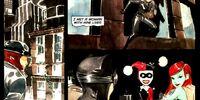 Lil Gotham/Gallery