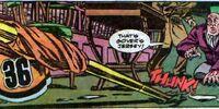 Gotham City Wildcats