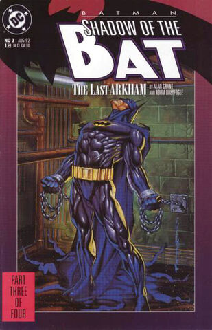 File:Batman - Shadow of the Bat 3.jpg