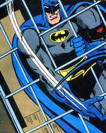 Batman Vol 1 491 001