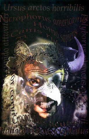 File:Animal Man 0013.jpg