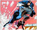 Flash John Fox 009