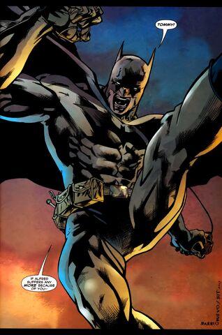 File:Batman 0297.jpg