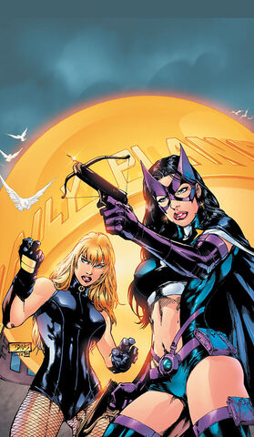File:Birds of Prey 0012.jpg