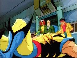 Wolverine Falls Before X-Men