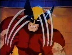 Wolverine PXM