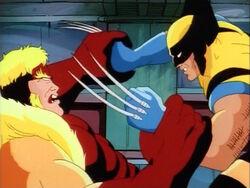 Sabretooth Wrestles Wolverine