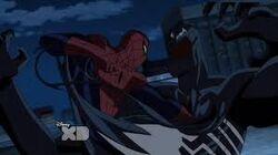 Venom Spider-Man Fighting USM