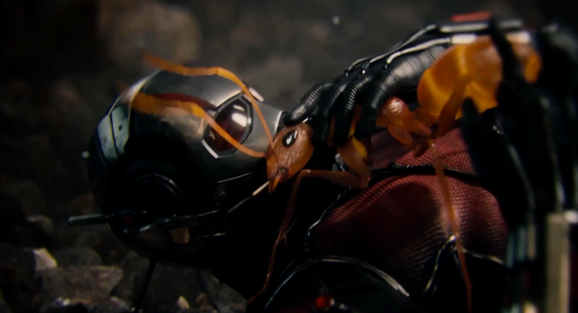 File:Ant-Man and Crazy Ant.png
