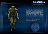 King Conra background