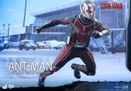 Ant-Man Civil War Hot Toys 7