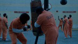 Lucas Squabbles training
