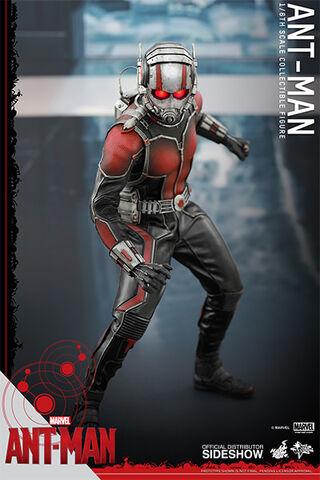 File:Ant-Man Hot Toys 4.jpg