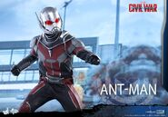 Ant-Man Civil War Hot Toys 14