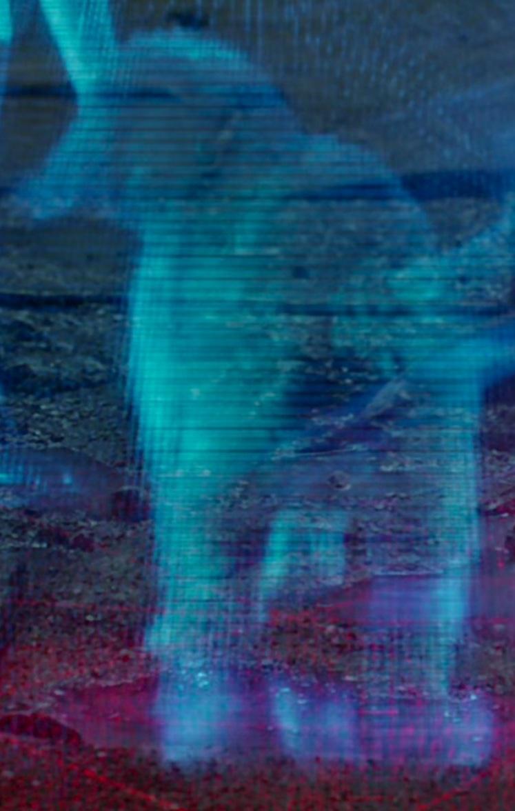 File:Holographic Dog.jpg