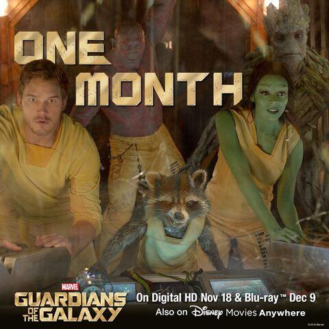 File:Gotg One Month DVD Promo.jpg