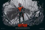 Ant-Man Mondo poster 2