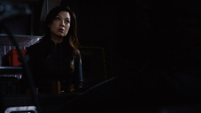 File:May Speaks To Coulson-4x01.jpeg