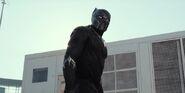 Black panther 97707