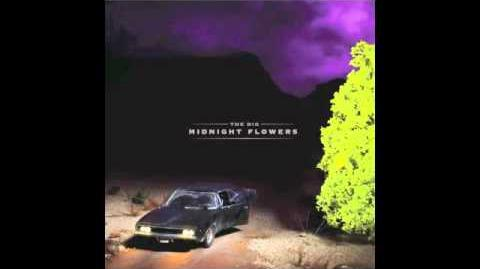 Red Rose in the Cold Winter Ground The Dig Midnight Flowers (2012)
