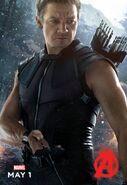 Hawkeye AOU Poster