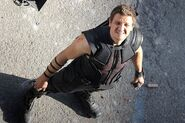 Hawkeye looking up-AoU