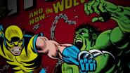 Wolverine & Hulk (75 Years)