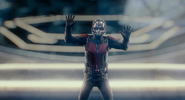 Ant-Man Trapped 5