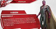 Vision Profile