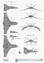 Athene noctua Earth-9603 Blueprint